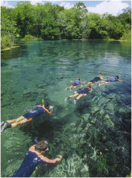 The Best Destinations for Eco-Tourism