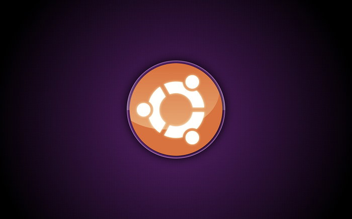 A zero-day exploit lets you run any type of code on Ubuntu and Fedora