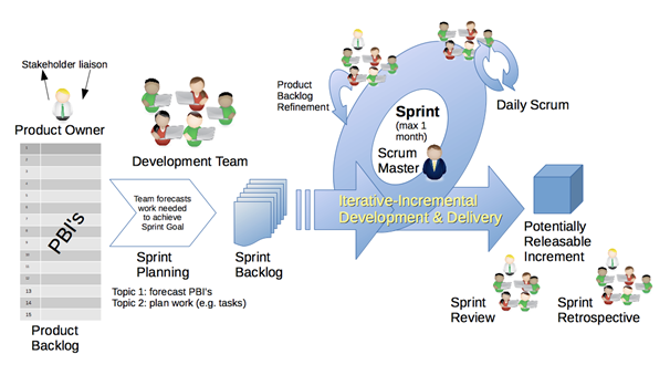 What are the 5 stages of an Agile scrum